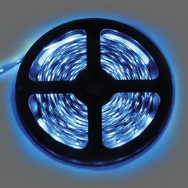 Лента светодиодная Ecola LED strip STD 4.8W/m 12V IP20 8mm 60Led/m Blue Синяя 0.5м