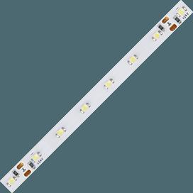 Ecola LED strip STD  4.8W/m 24V IP20   8mm  60Led/m 6000K 4Lm/LED 240Lm/m светодиодная лента 0.5 м.